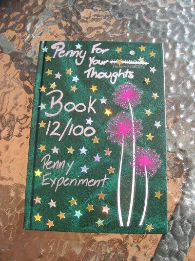 penny experiment book 12 front